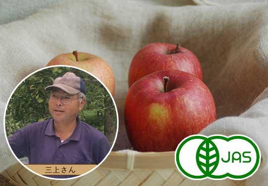 有機りんご