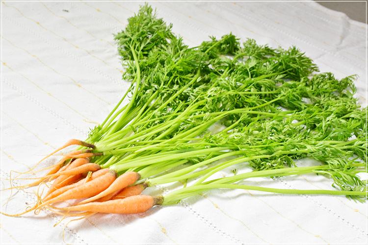 [有機栽培] にんじん抜き菜 (150g)