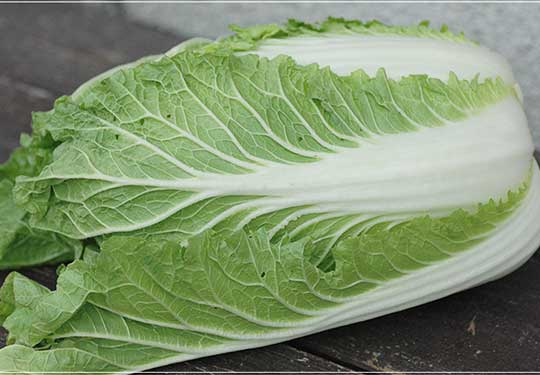 有機栽培 ミニ白菜