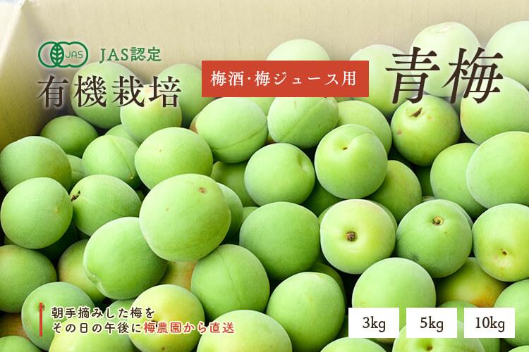 [有機栽培]熊代農園の青梅 (5kg)