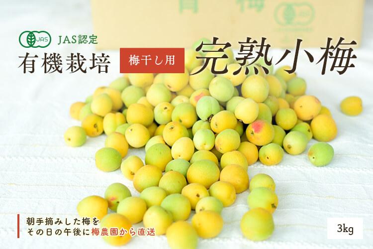 [有機栽培] 熊代農園の完熟小梅 (3kg)