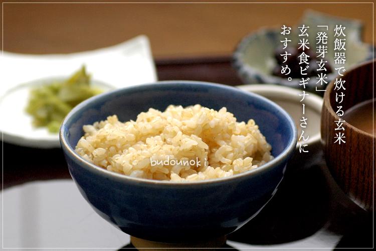 [有機栽培] 有機発芽玄米【芽吹き小町】 (1kg)