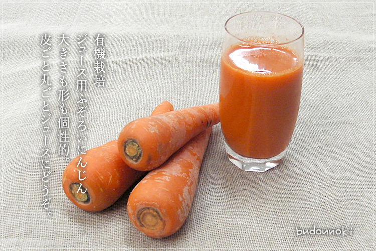 [有機栽培] ジュース用にんじん(ふぞろい) (3kg)