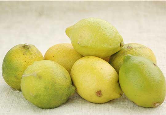 特別栽培レモン