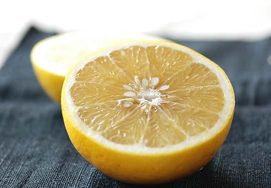 特別栽培グレープフルーツ