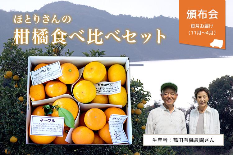 ほとりさんの柑橘食べ比べセット(4種3kg)
