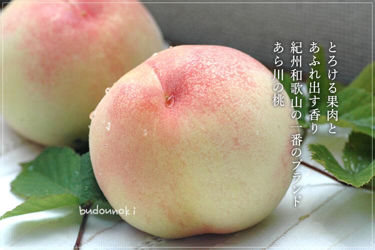 [特別栽培] あら川の桃 2kg(6〜8玉)