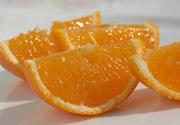 有機栽培マドンナオレンジ