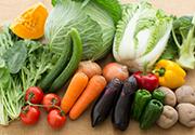 有機野菜のギフトセット