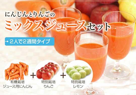 にんじんジュース基本のセット