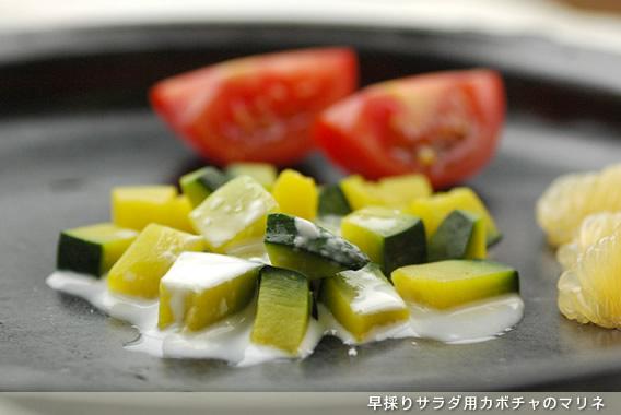 早採りサラダ用カボチャのマリネ