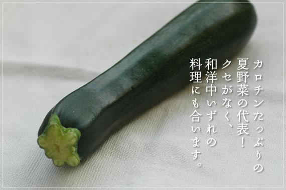 カロチンたっぷりの夏野菜の代表!クセがなく、和洋中いずれの料理にも合います。 ズッキーニ有機JAS認定