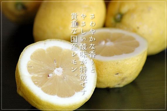 さわやかな香りとやさしい酸味が特徴です。貴重な国産レモン。 レモン