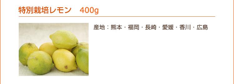特別栽培レモン 400g(産地:熊本・福岡・長崎・愛媛・香川・広島)