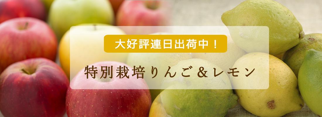 特別栽培りんご&