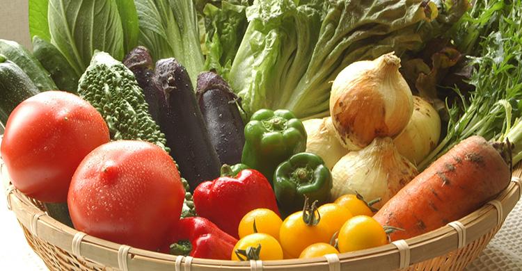 有機JAS認定 旬の有機野菜セット