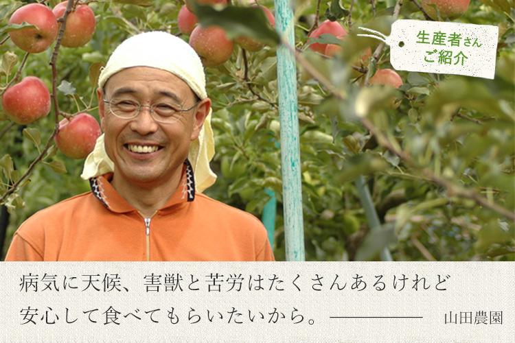 りんごの生産者 山田さん