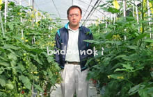 有機栽培にんじん吉水さん