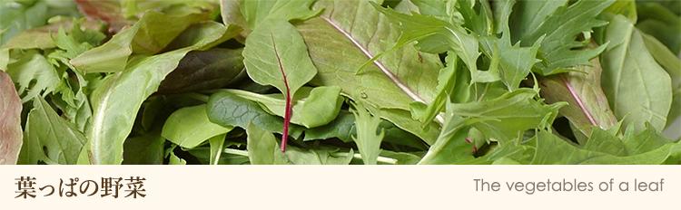 葉っぱの野菜