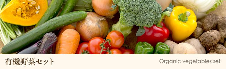有機野菜セット オーガニック野菜セット