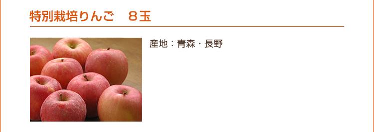 特別栽培りんご 8玉(産地:青森・長野)