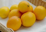 特別栽培国産レモン