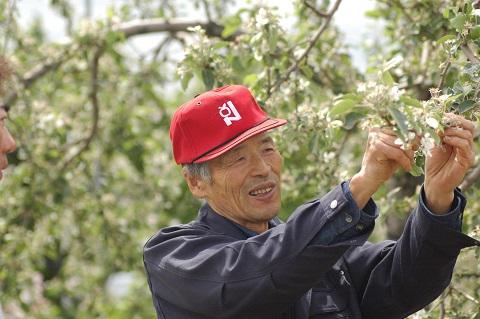 有機りんご生産者 福田さん