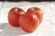 減農薬りんご サンふじ