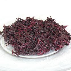 有機栽培梅紫蘇