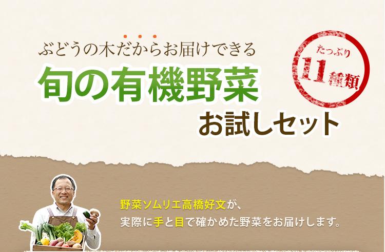 旬の野菜8種類