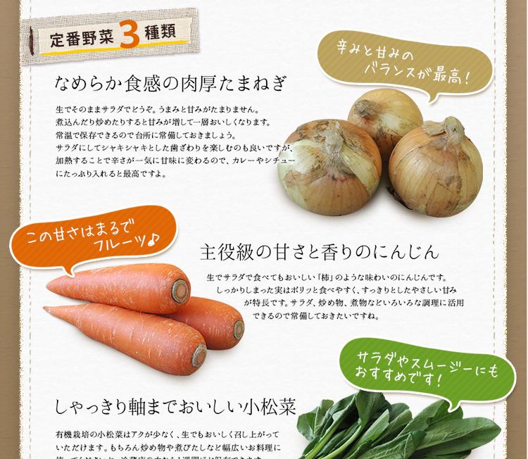 定番野菜3種類 なめらか食感の肉厚たまねぎ