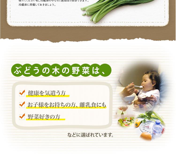 ぶどうの木の野菜は、健康を気遣う方、お子様をお持ちの方、離乳食にも、野菜好きの方 などに選ばれています