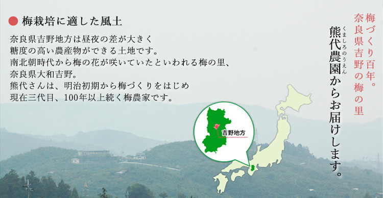 梅の生産者 奈良県 熊代農園 熊代さん