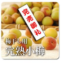 JAS認定有機栽培 梅