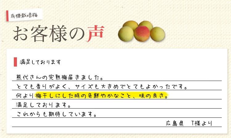 梅干用完熟有機栽培梅 お客様の声1