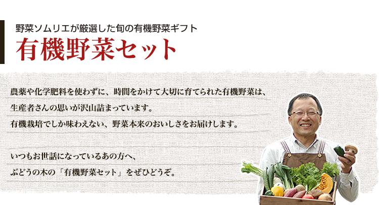 野菜ソムリエが厳選した旬の有機野菜ギフト