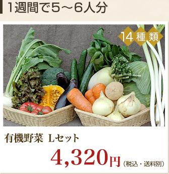 有機野菜Lセット