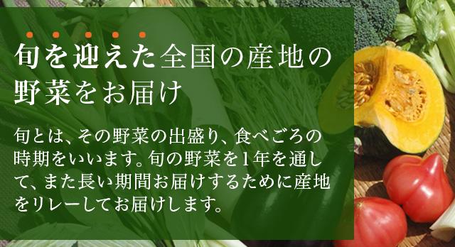 旬を迎えた全国の産地の野菜をお届け