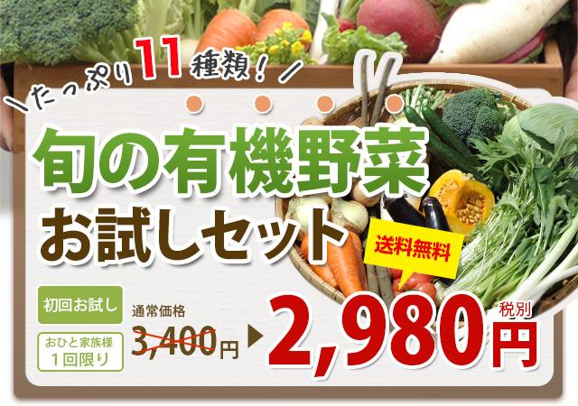たっぷり11種類!旬の有機野菜お試しセット