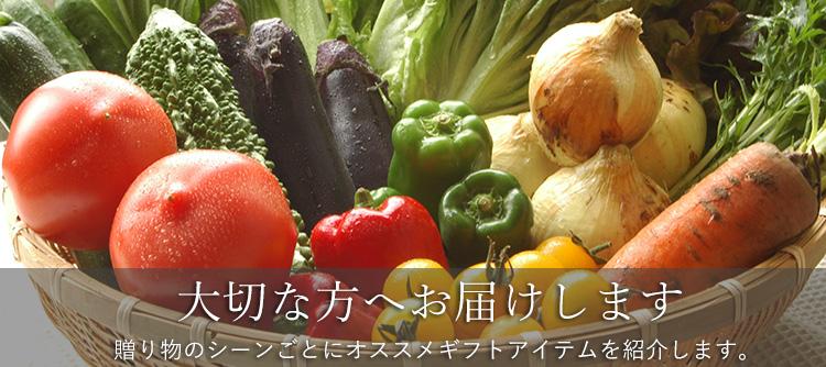 大切な方に贈る特別な贈り物 有機野菜のギフトセット