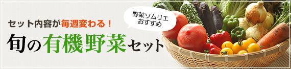 セット内容が毎週変わる! 旬の有機野菜セット
